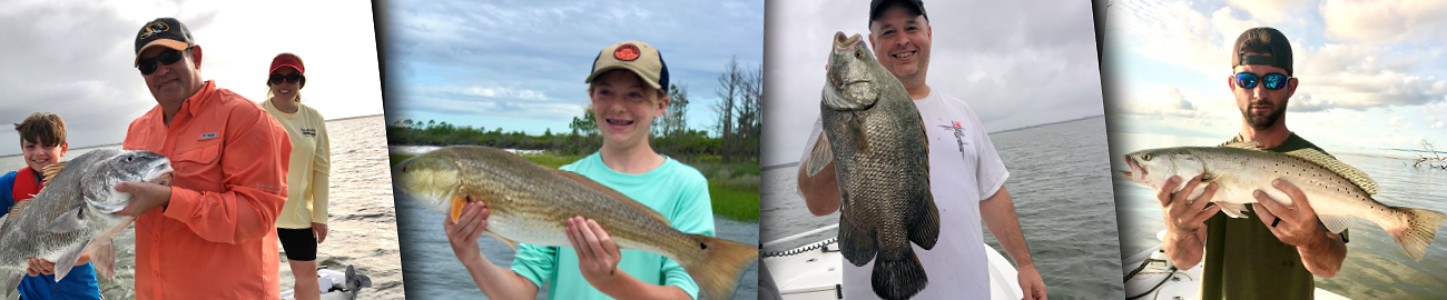 Blackdrum Redfish Tripletail Trout